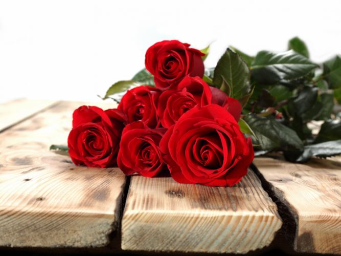 Bouquet - emotions - Flowers - For - gift - Happy - life - love - romance - roses - wife wallpaper