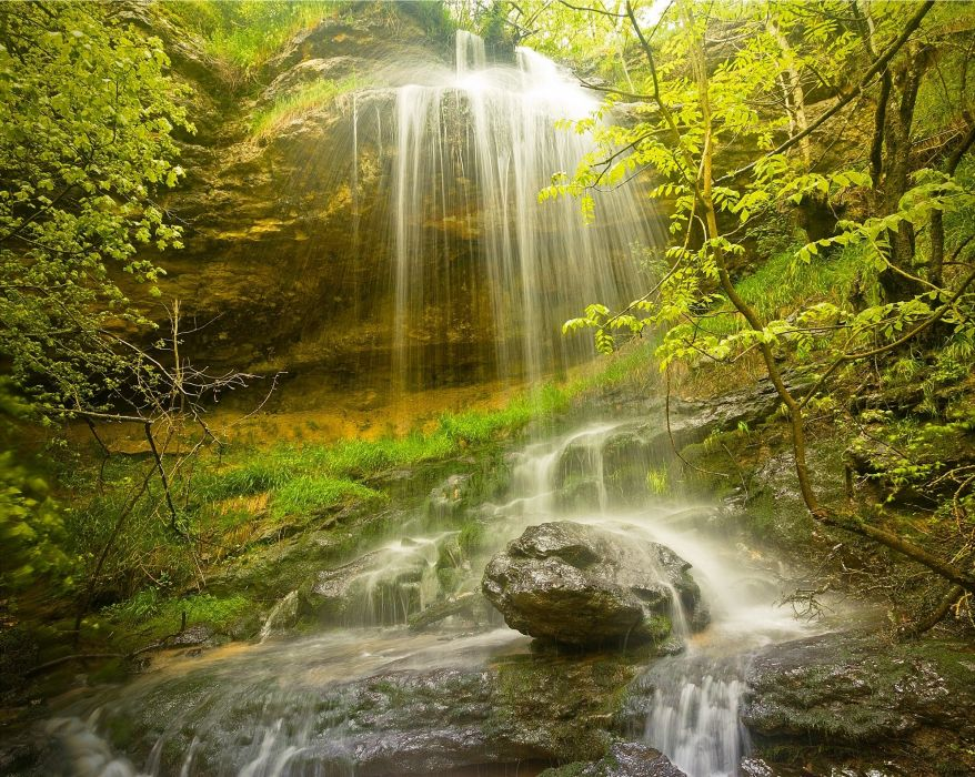 forest rocks trees waterfall nature wallpaper