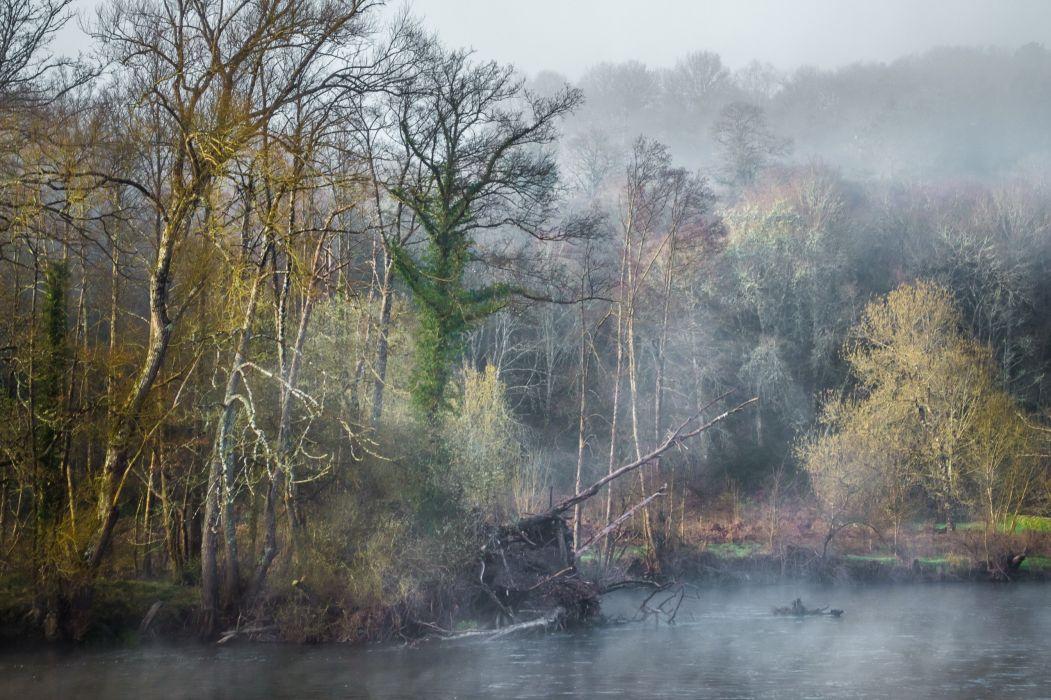 forest river fog autumn wallpaper