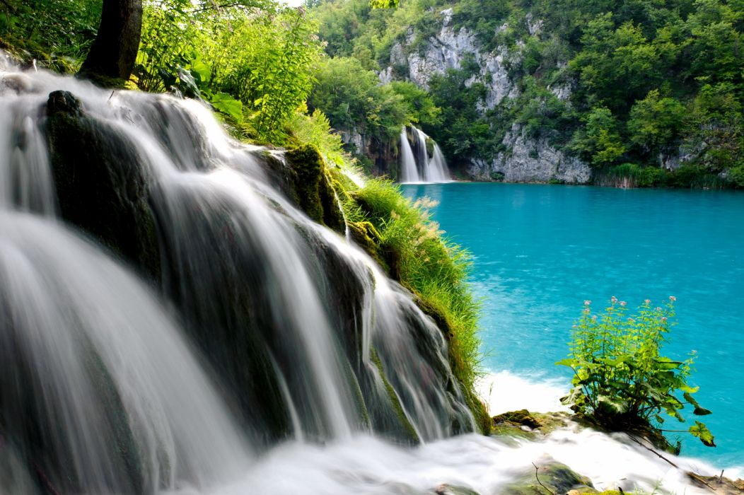 forest trees lake stream waterfall wallpaper