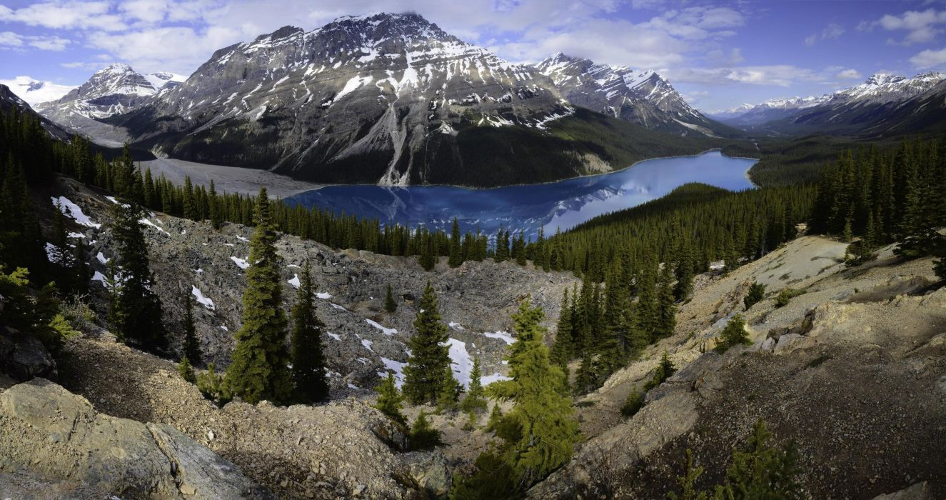 lake drink mountains forest landscape peyto lake banff national park canada trees spruce alberta Alberta sky Banff National Park wallpaper