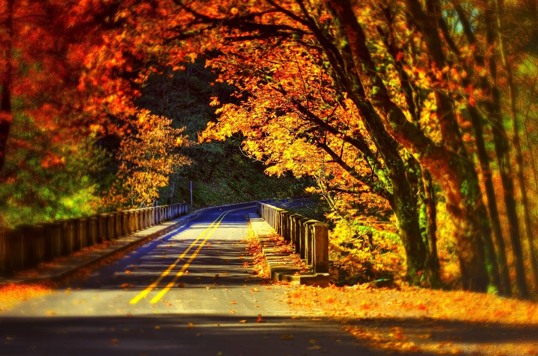 Colorful Rocks Wallpaper Fall Colorful Autumn Road
