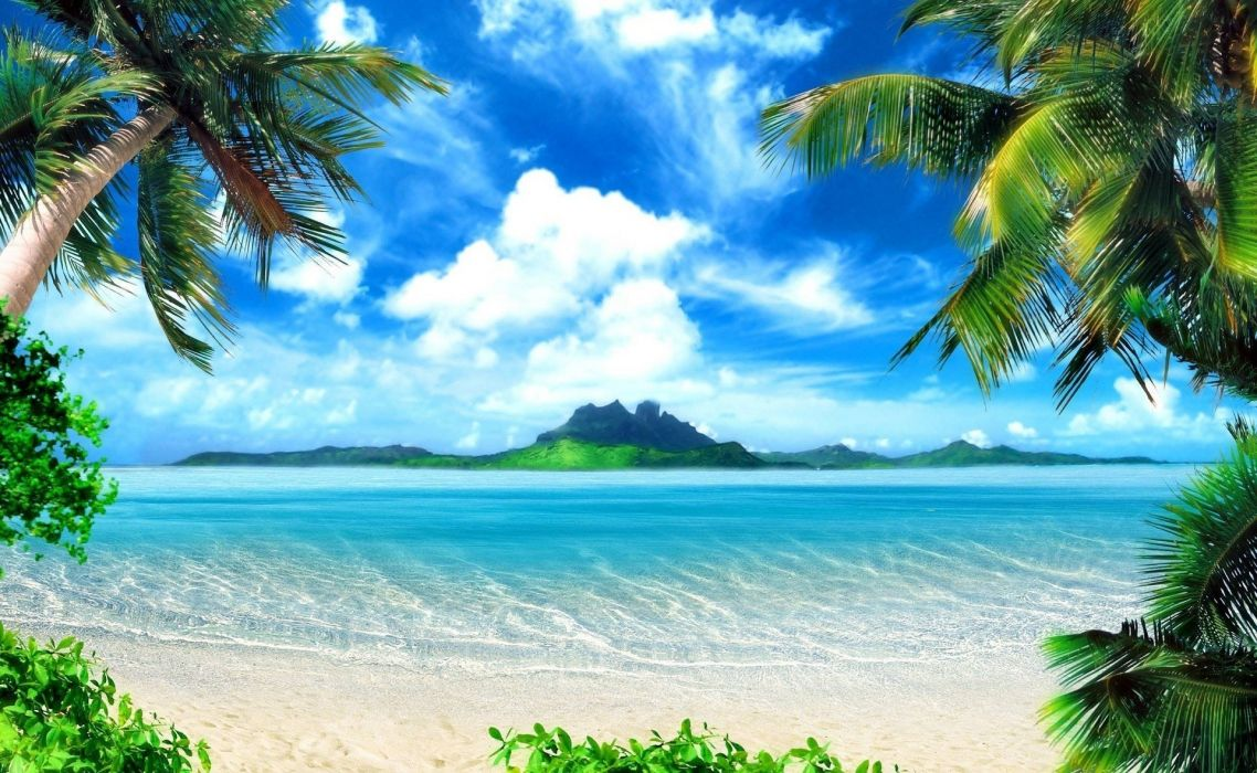 palm trees tropical beach sea island wallpaper