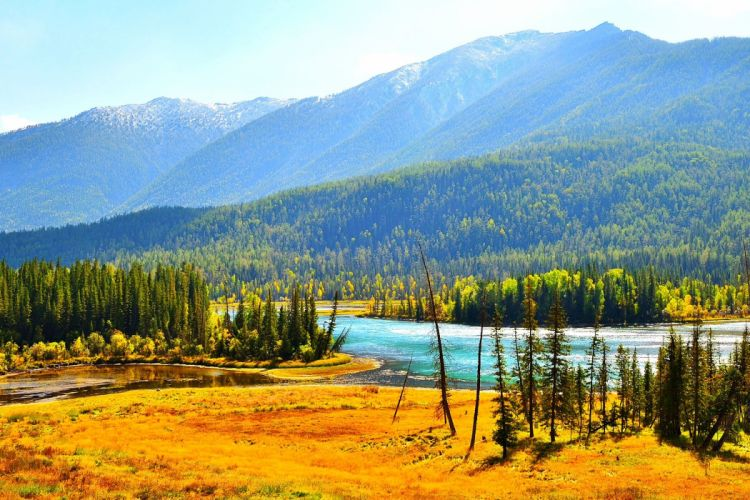 river forest trees hills mountains fall landscape autumn wallpaper