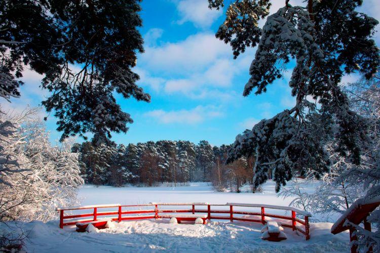 Russia Seasons Winter Scenery Snow Trees Nature wallpaper