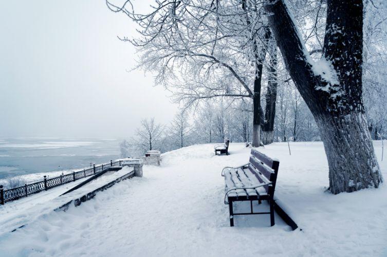 Seasons Winter Snow Bench Trunk tree Nature wallpaper