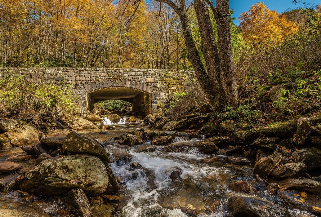 river rocks bridge trees autumn nature wallpaper