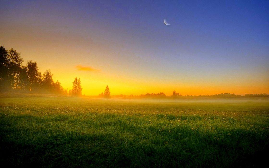 Sky sun sunset moon night trees field grass fog nature landscape wallpaper