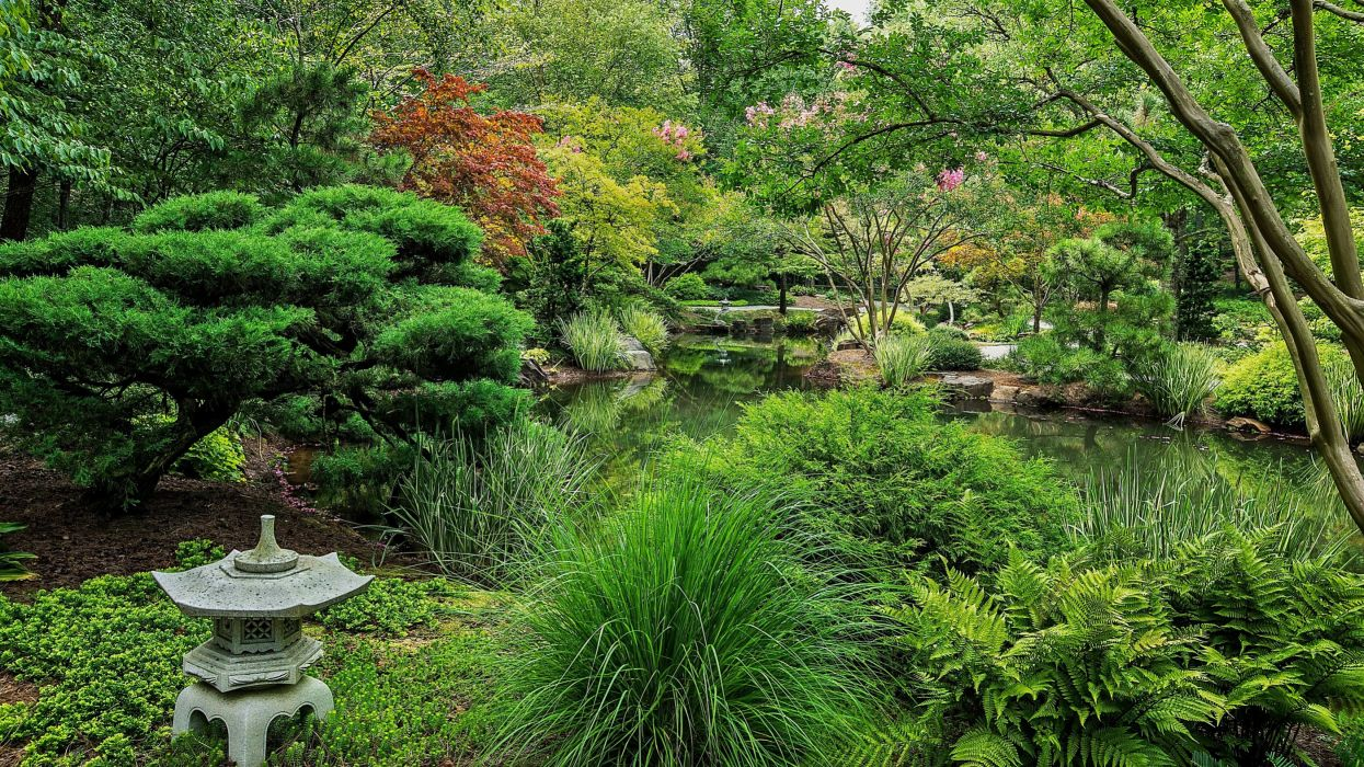 USA Parks Pond Ball Ground Gibbs Gardens Shrubs Nature wallpaper