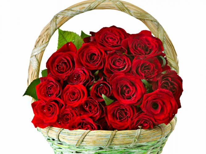 roses flowers bouquet Basket love romance life happiness couple wallpaper