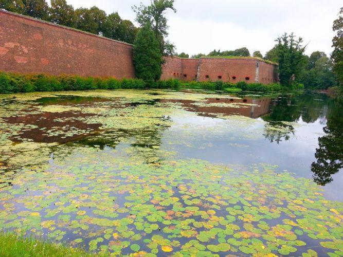 Berlin Spandau Zitadelle castle lake waterlilly wallpaper