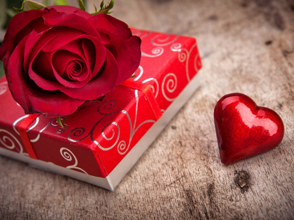 Rose flowers red love romance life for chocolate gift ...
