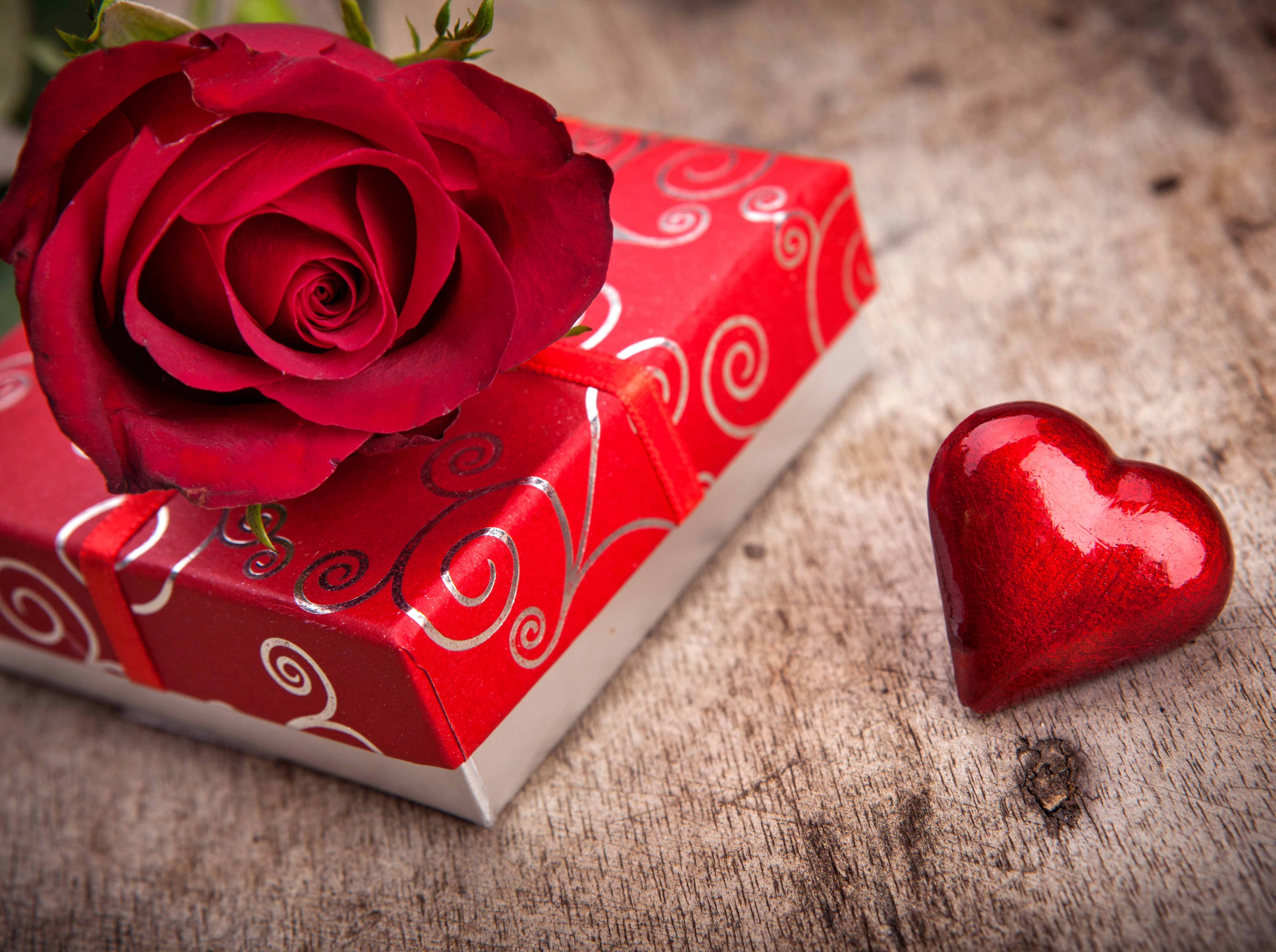 Rose Flowers Red Love Romance Life For Chocolate Gift Couple Heart