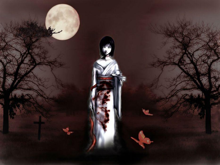 FATAL FRAME Project Zero supernatural survival horror dark 1fframe exploration fantasy gothic japanese wallpaper