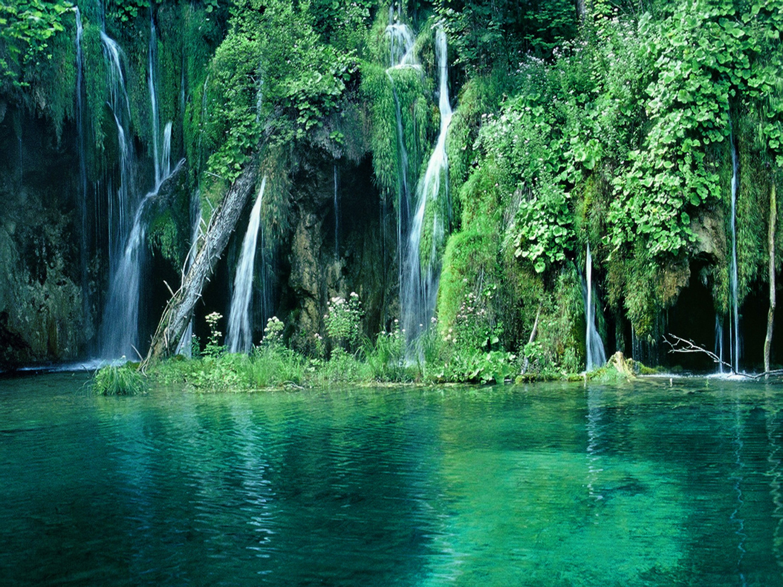 Selva cascadas vegetecion naturaleza paisaje wallpaper for Fondos de pantalla 7 maravillas del mundo