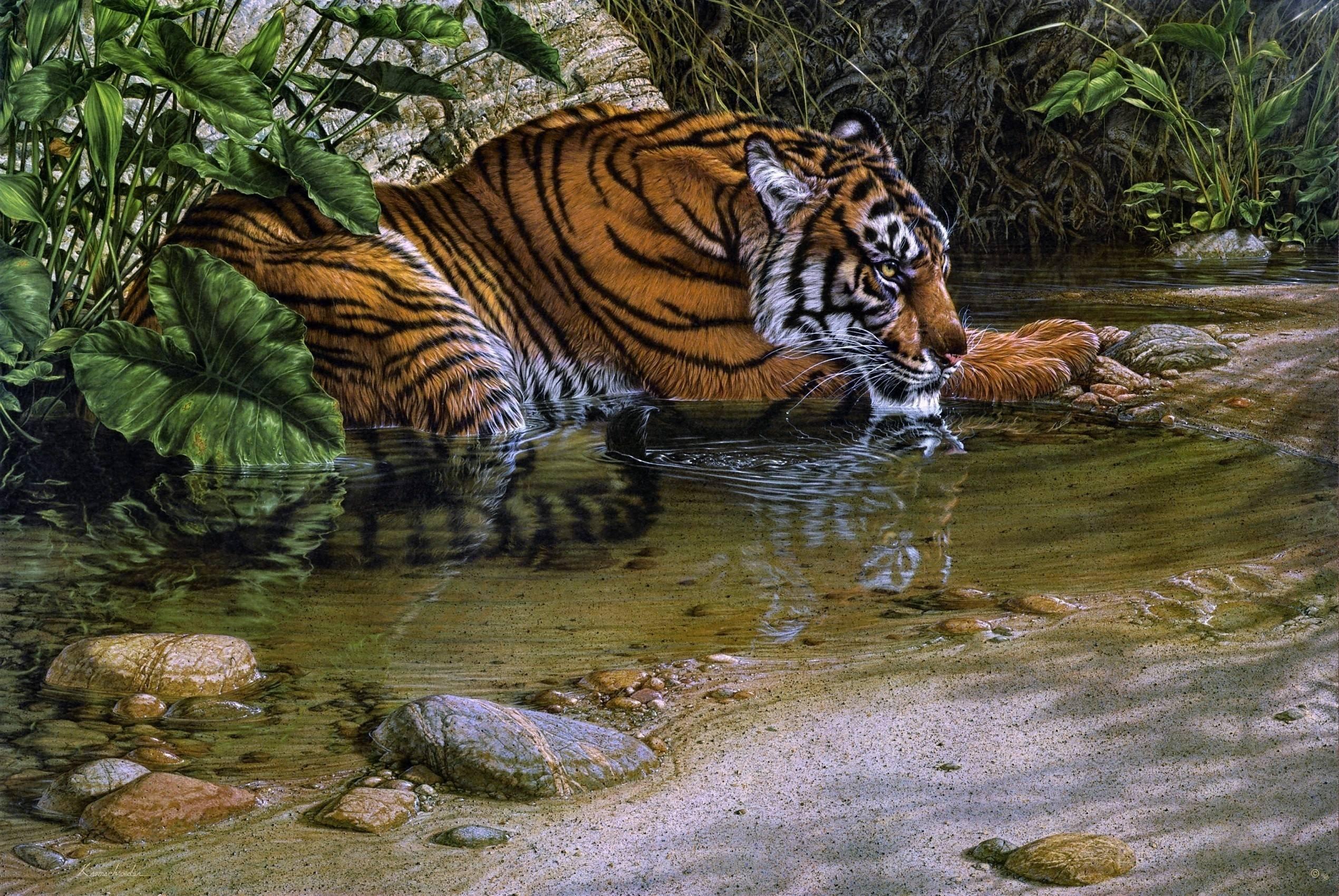 Tigre-jungla-animales-pintura-agua-selva wallpaper ...
