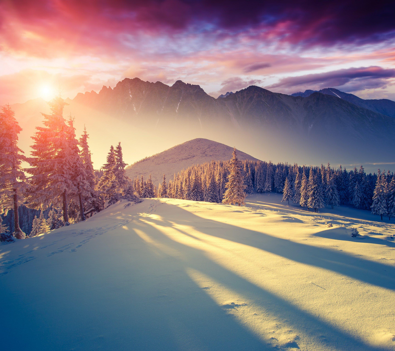 Winter Wallpaper: Winter Sun-wallpaper-10522379 Wallpaper