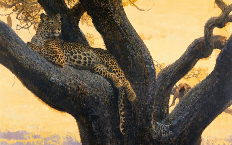 painting art Cheetah tree animal wallpaper