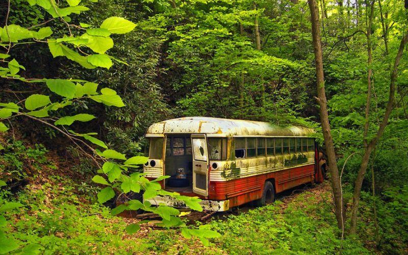 bus-viejo-bosque-naturaleza-arboles-vegetacion wallpaper