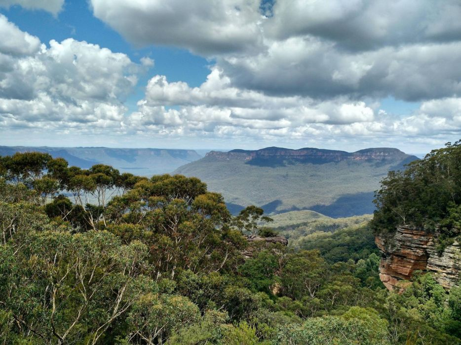 National Park The Blue Mountains New South Wales NSW Australia forest wallpaper