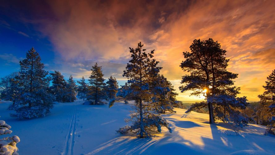 snow naglestadheia winter frost Norway wallpaper