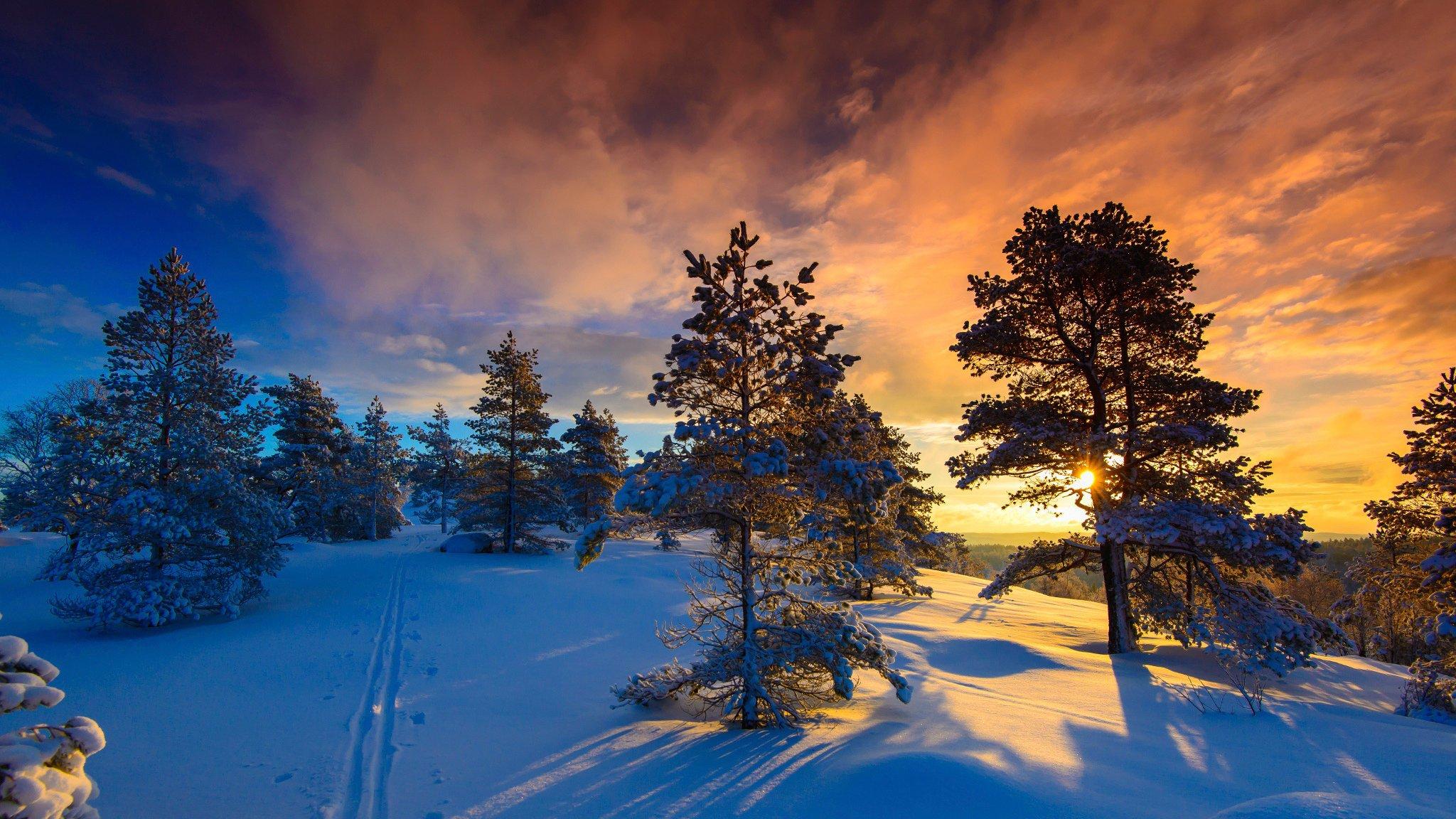 Snow naglestadheia winter frost Norway wallpaper ...