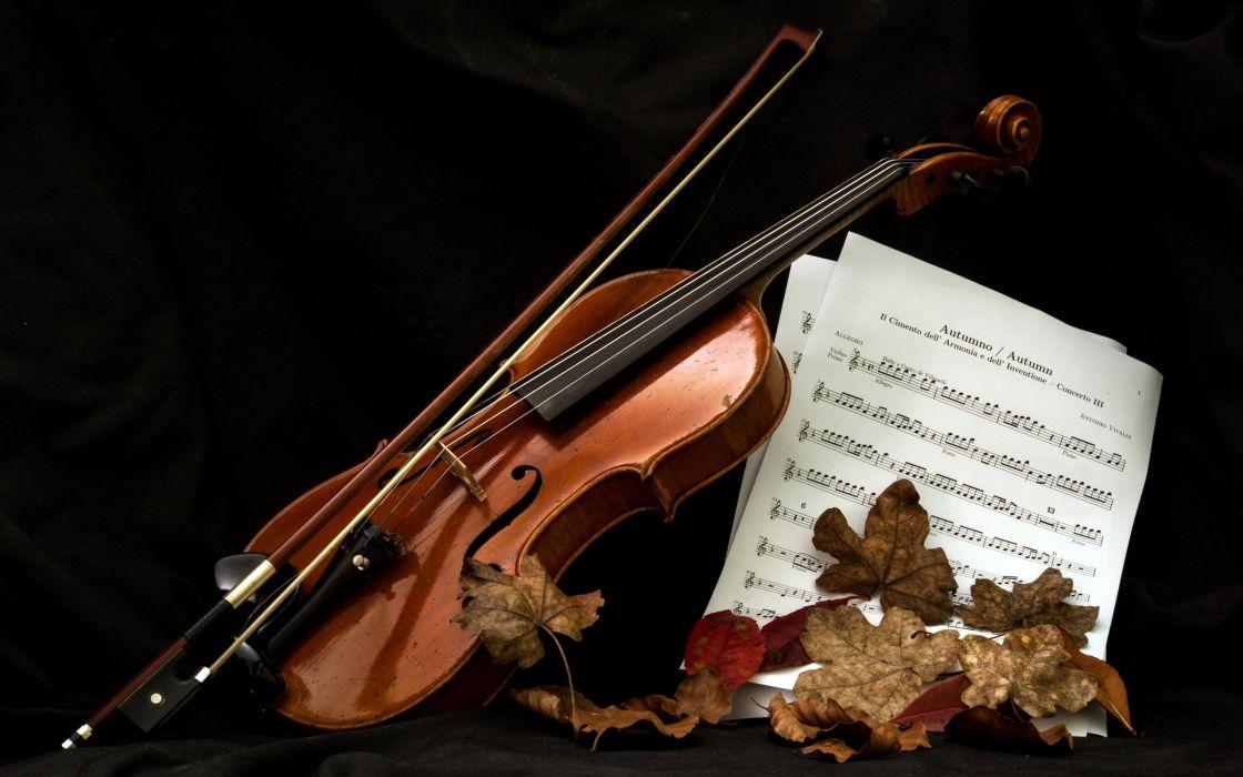 Music Instrument Violin Notes Love Mood Leaf Wallpaper