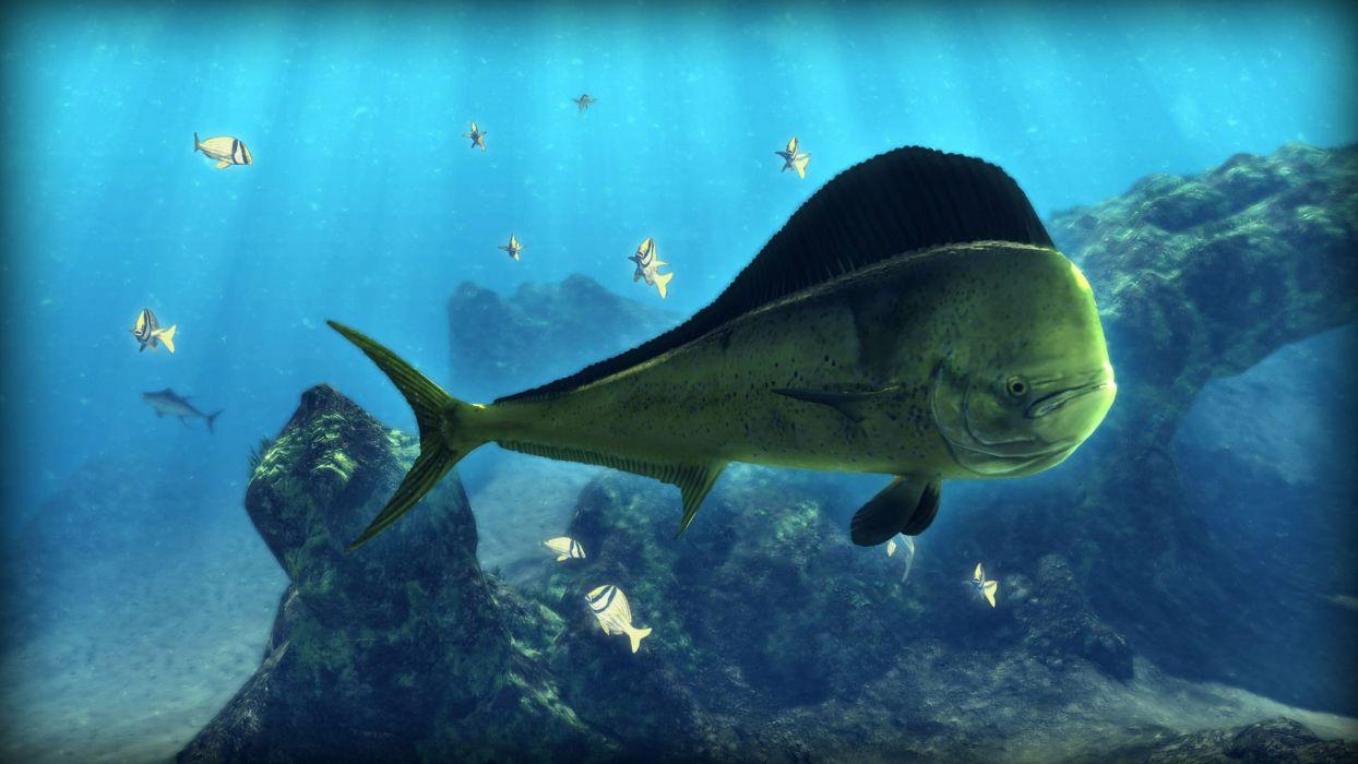 DEPTH HUNTER fishing fish hunting adventure action underwater sea ocean 1depth wallpaper