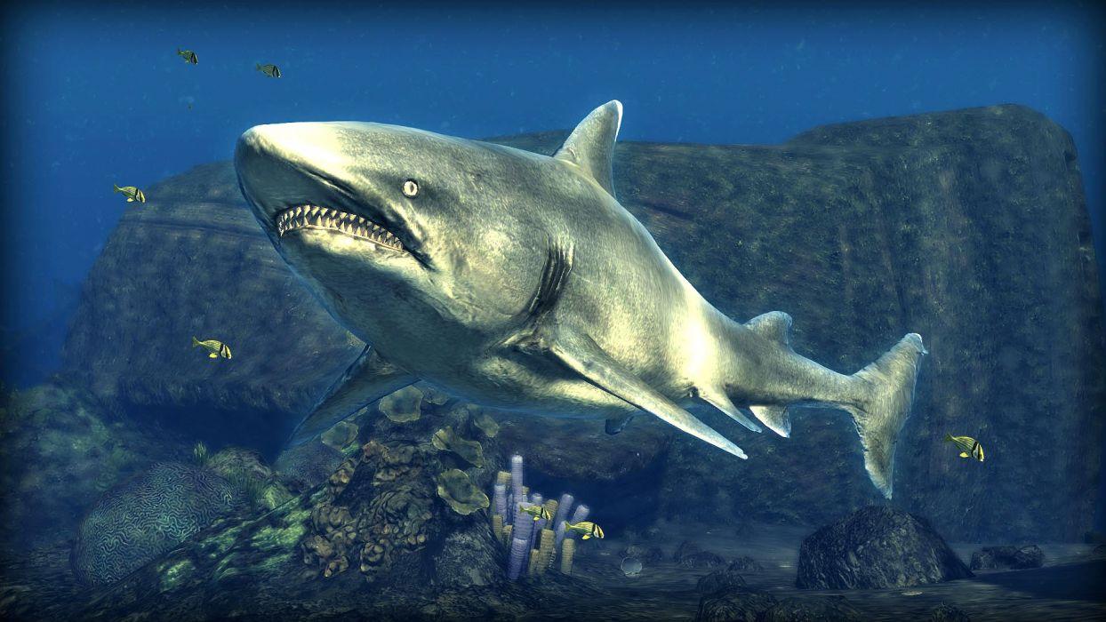 DEPTH HUNTER fishing fish hunting adventure action underwater sea ocean 1depth shark wallpaper