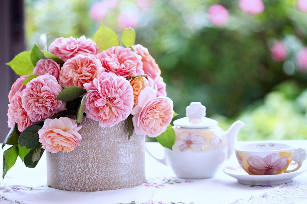 roses flowers breakfast coffee morning milk relax romance love family house vase beaker cup glass garden spring wallpaper