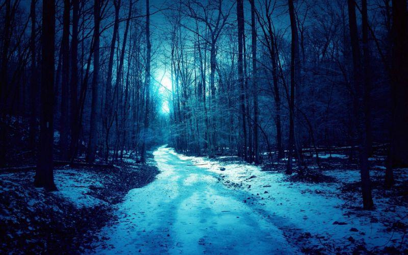 forest blue winter dark spooky road wallpaper