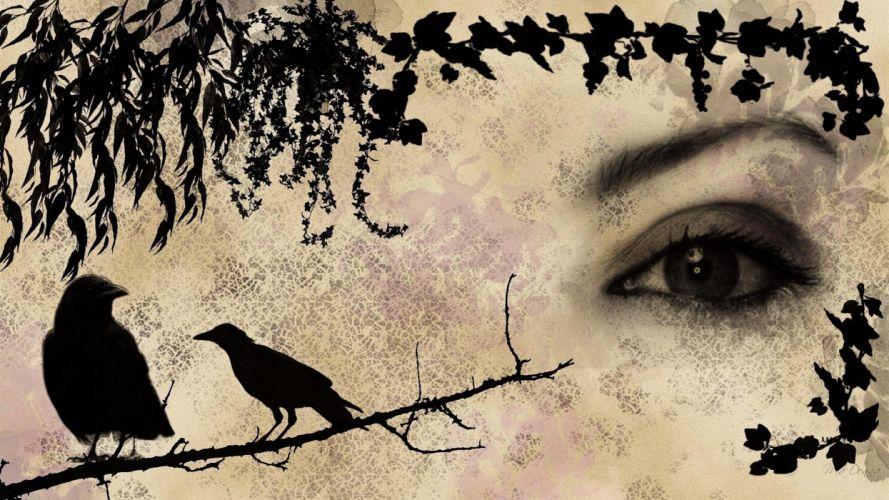 dark goth crow raven emo death wallpaper