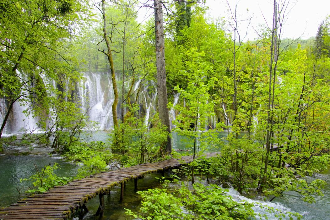 trees waterfall cascades National Park Plitvice Lakes Croatia wallpaper