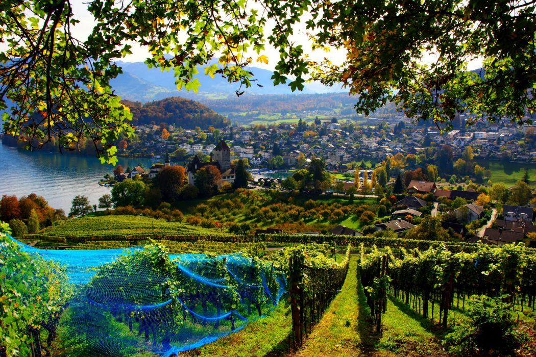 Switzerland House Fields Spiez Cities autumn wallpaper