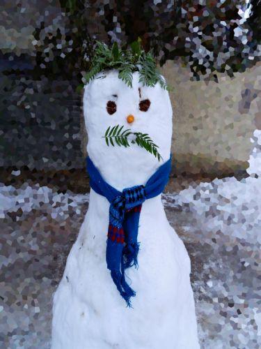 snow snowman white scarf winter fun funny wallpaper