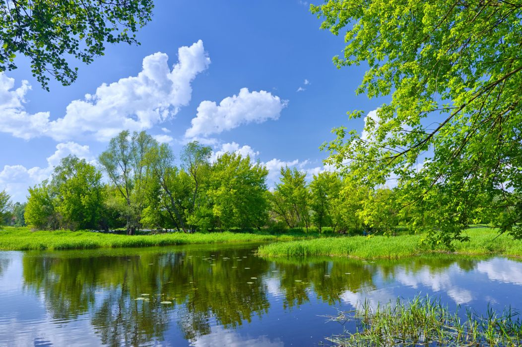nature landscapes earth lakes trees forest sky clouds beauty spring sunny wallpaper