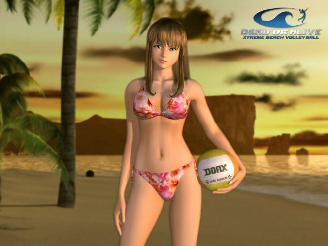 DEAD OR ALIVE Deddo Oa Araibu fighting doa 1dalive action warrior martial ninja arcade girl babe sexy swimwear bikini wallpaper