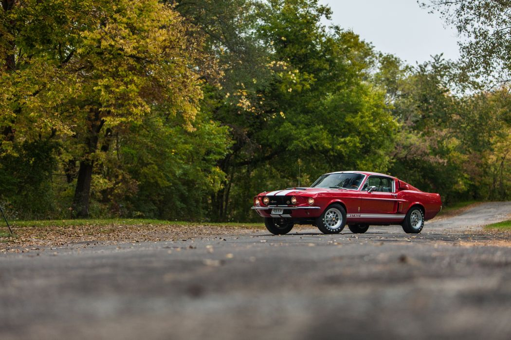 1966 Ford Mustang Shelby Cobra GT500 Muscle Classic USA d 5100x3400-13 wallpaper