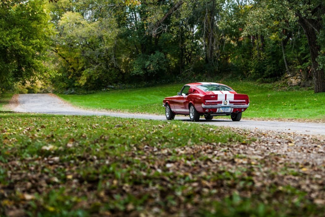1966 Ford Mustang Shelby Cobra GT500 Muscle Classic USA d 5100x3400-16 wallpaper