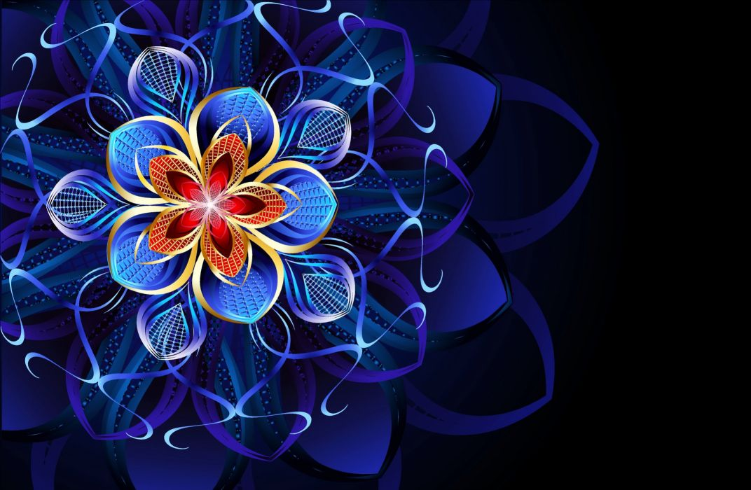 pattern flower colors wallpapers backgroung wallpaper