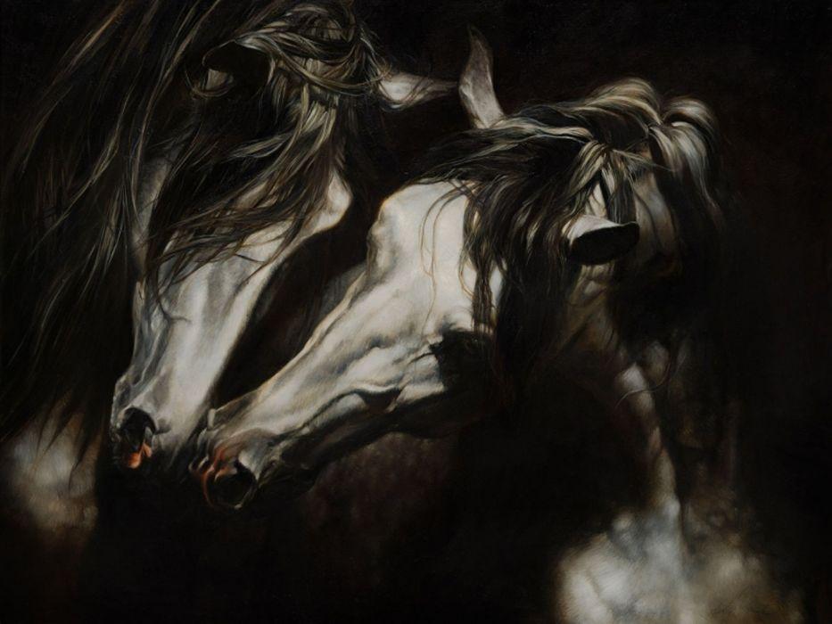 art horses white beautiful animal cute wallpaper