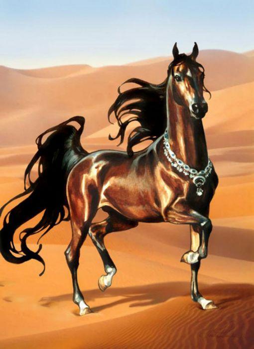 art horse brown beautiful animal wallpaper