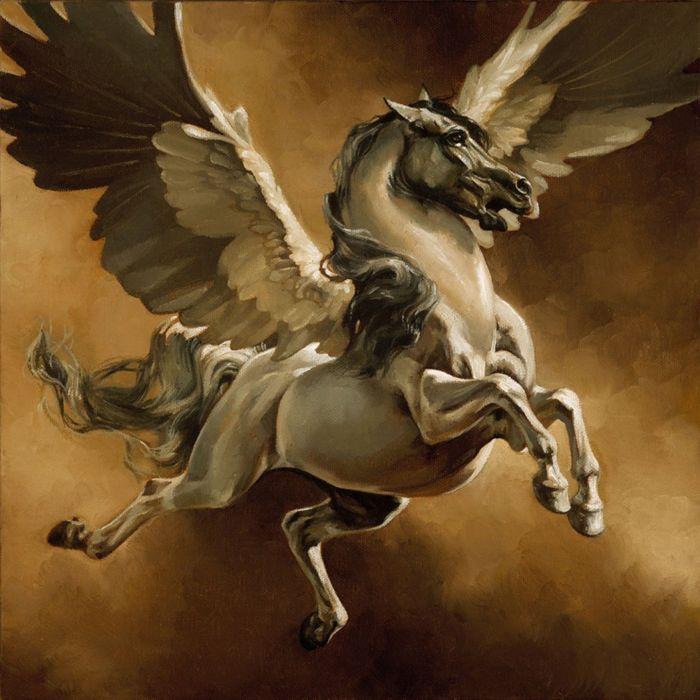 freedom art horse white beautiful animal wings pegasus fantasy wallpaper