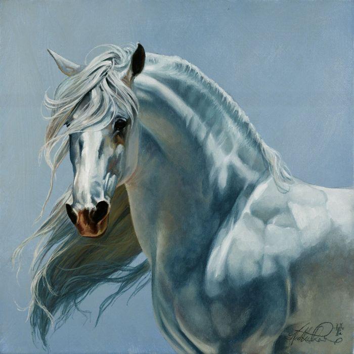 freedom art horse white beautiful animal wallpaper