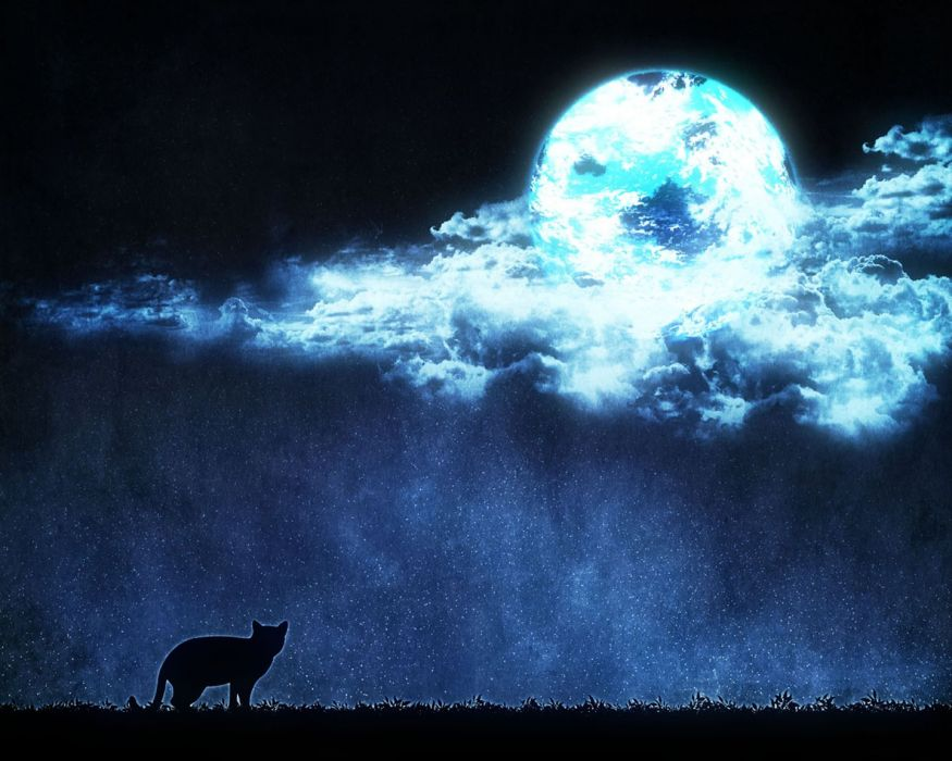 moon anime scan cat beautiful sky stars clouds wallpaper