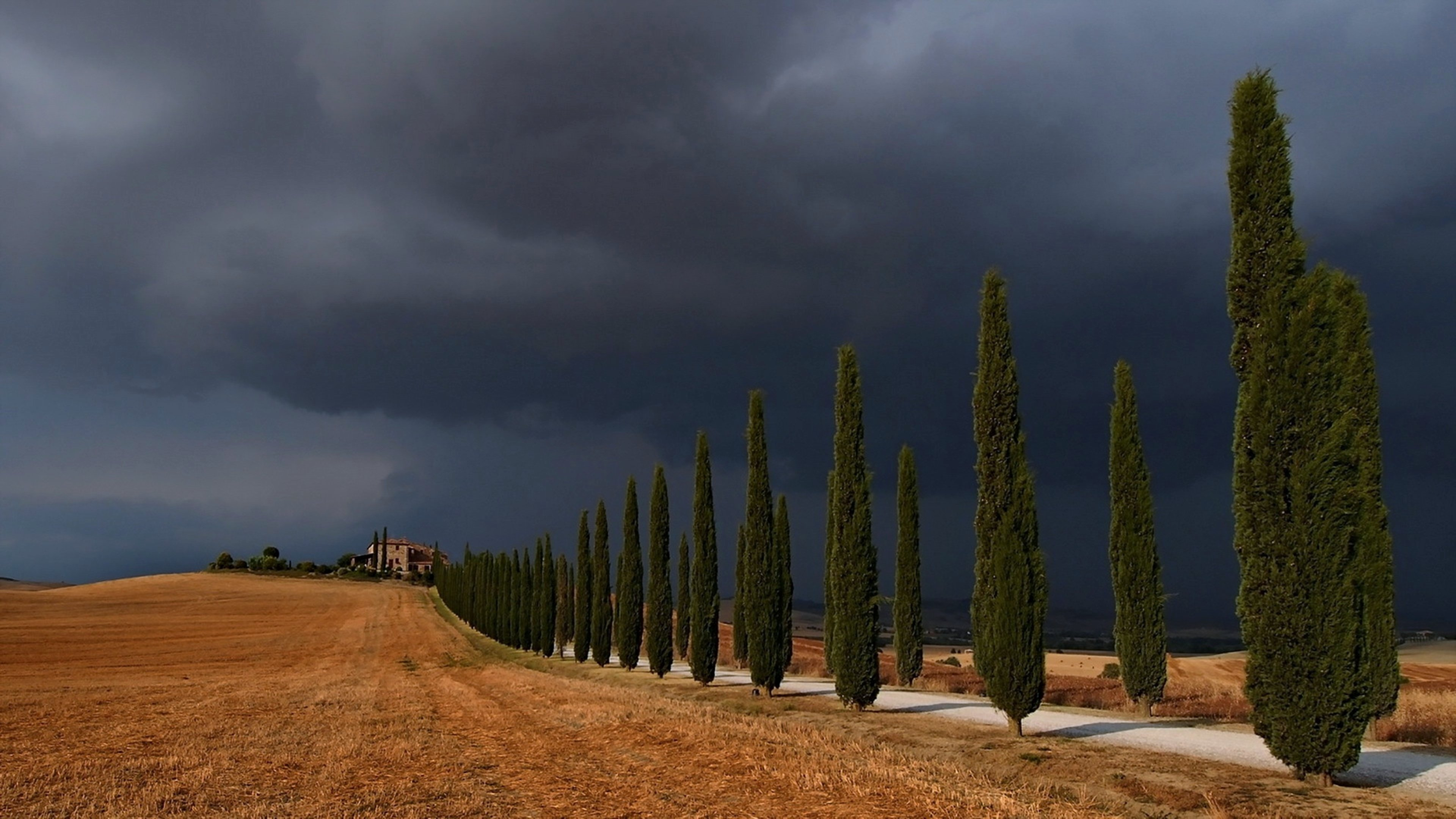 Storm Val D 039 Orcia Trees Road Sky Landscape Nature Fields Clouds