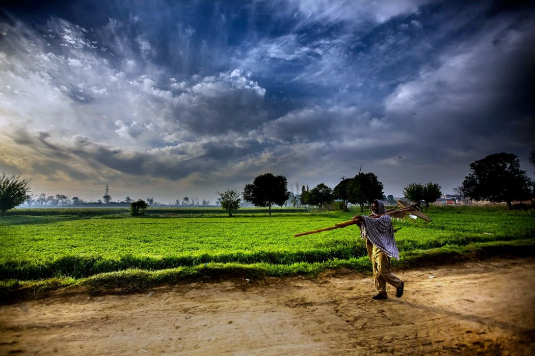 pakistan landscapes man Farmer Agriculture clouds sky trees fog nature countryside grass wallpaper