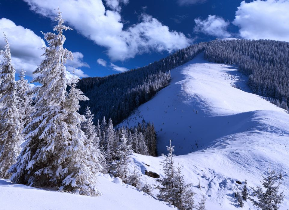 mountains snow landscapes nature trees jungle forest sky clouds blue wallpaper