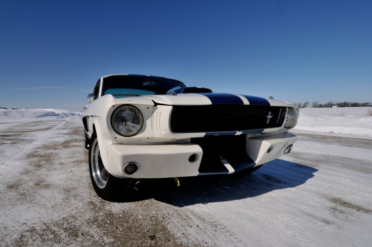 1966 Ford Mustang Shelby GT350 Fastback Muscle Classic USA 4200x2790-12 wallpaper