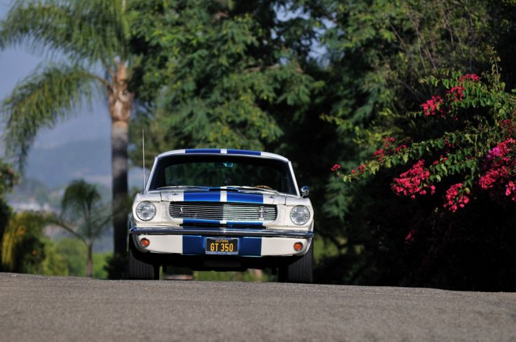 1966 Ford Mustang Shelby GT350 Fastback Muscle Classic USA 4200x2790-04 wallpaper